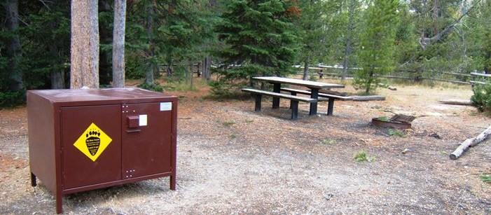 Bear-box para proteger la comida del oso y al oso alejado del hombre.